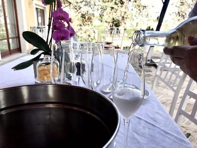 handmade pasta with grandma sirolo wine